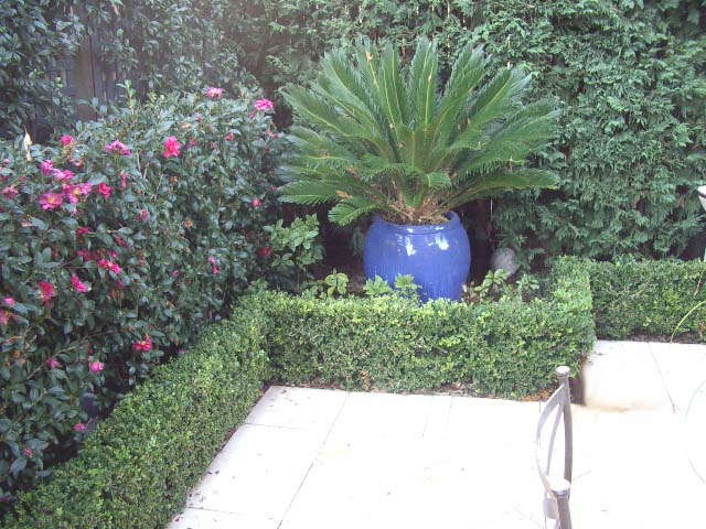 The Courtyard Small Space Garden Design Potted